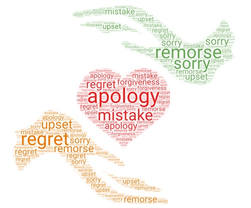 apology words