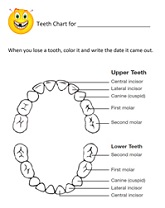 kids teeth chart